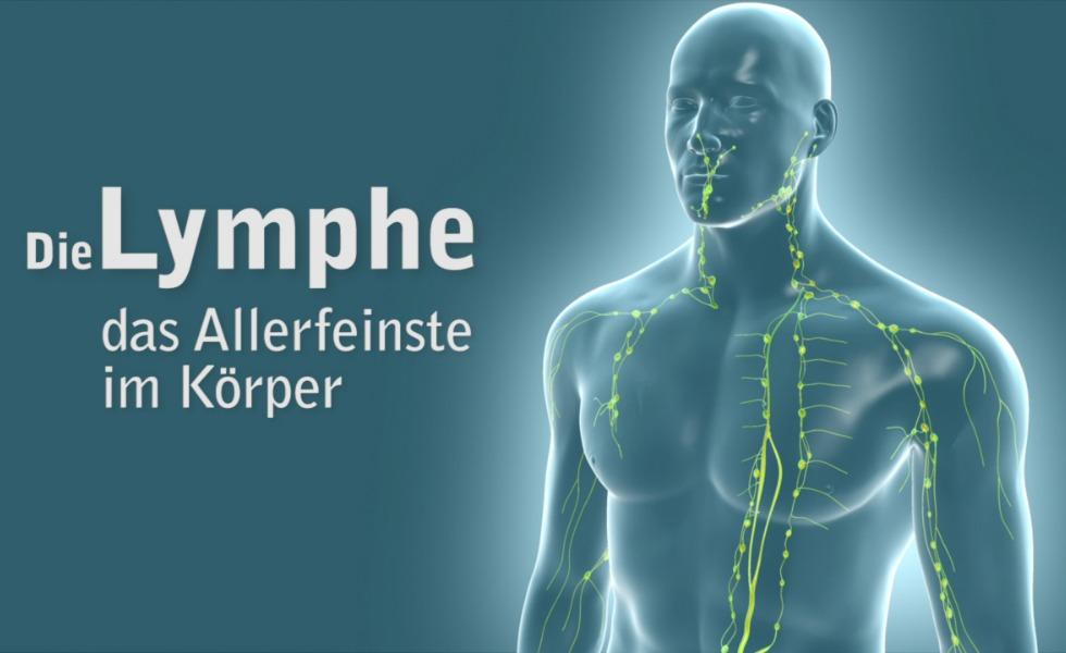 Anzeige: Abwehrstarkes Lymphsystem mit Pascoe Naturmedizin