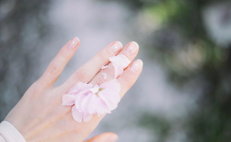 Blumen und Blüten in der Hautpflege