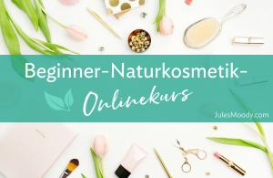 Beginner-Onlinekurs