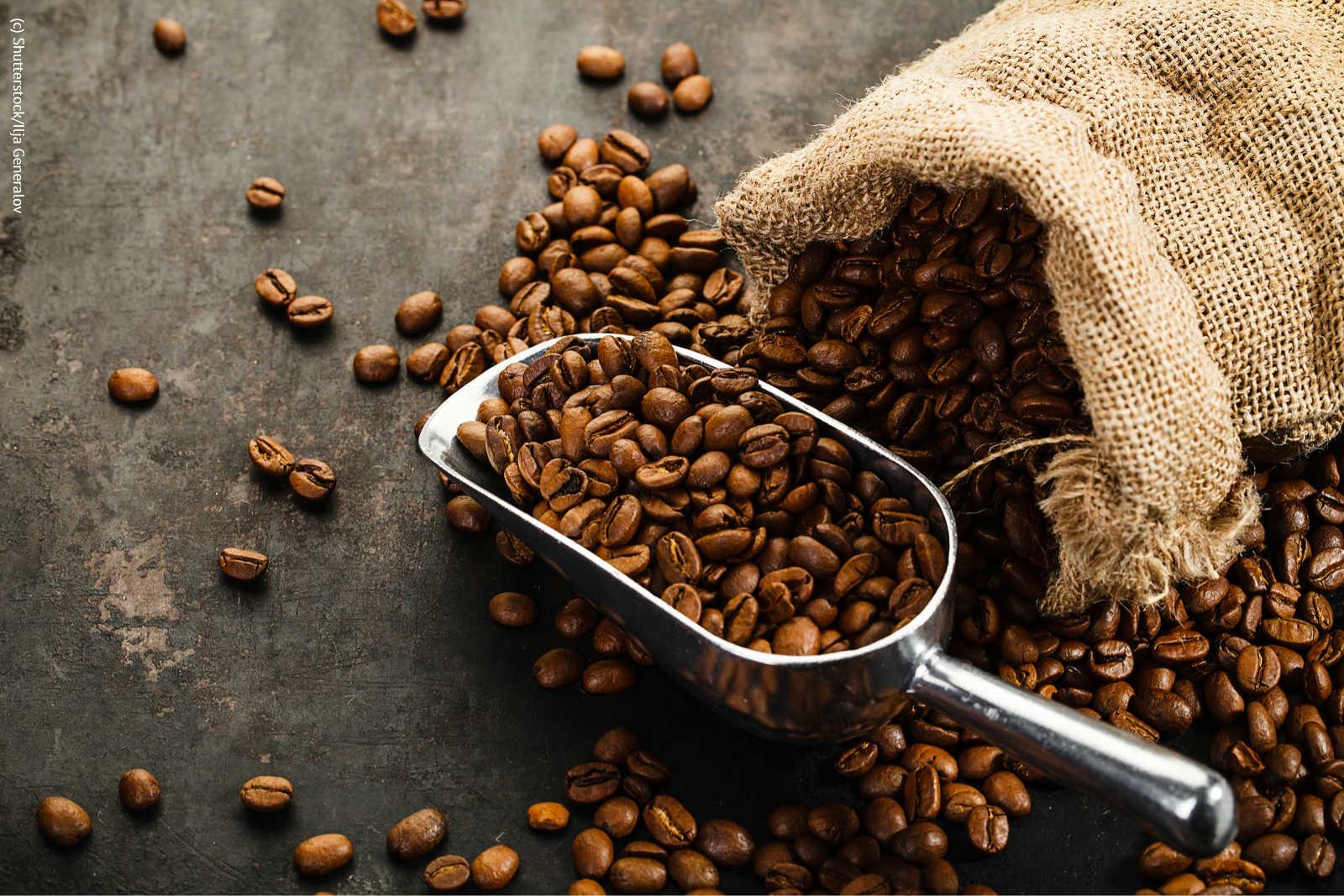 Kaffee als Haarrinse