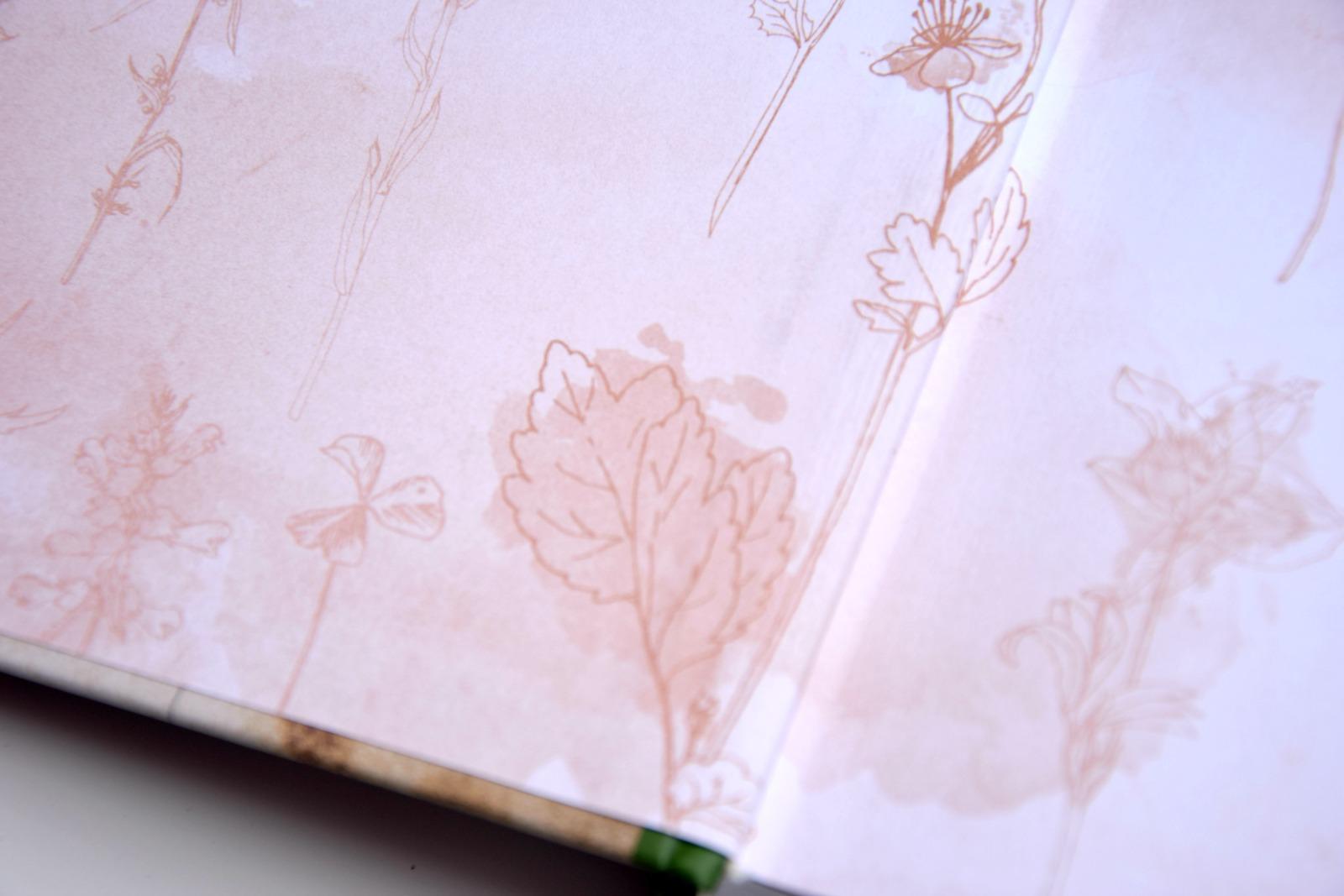 Der Pflanzencode - das Buch
