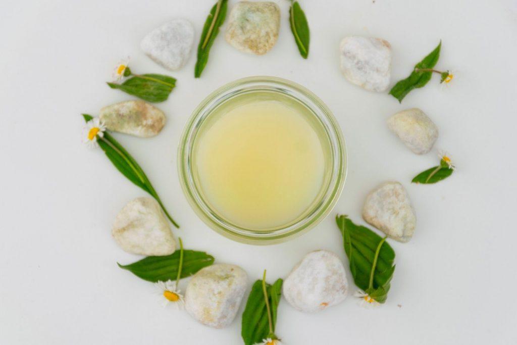 Gänseblümchen-Balsam ganz einfach herstellen