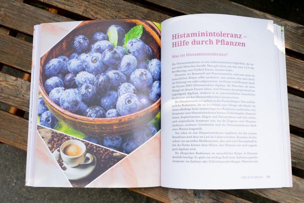 Blick ins Buch: Alternative Therapien bei Allergien