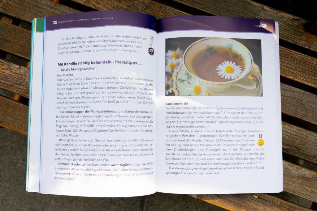 Blick ins Buch: Heilende Mundspülungen
