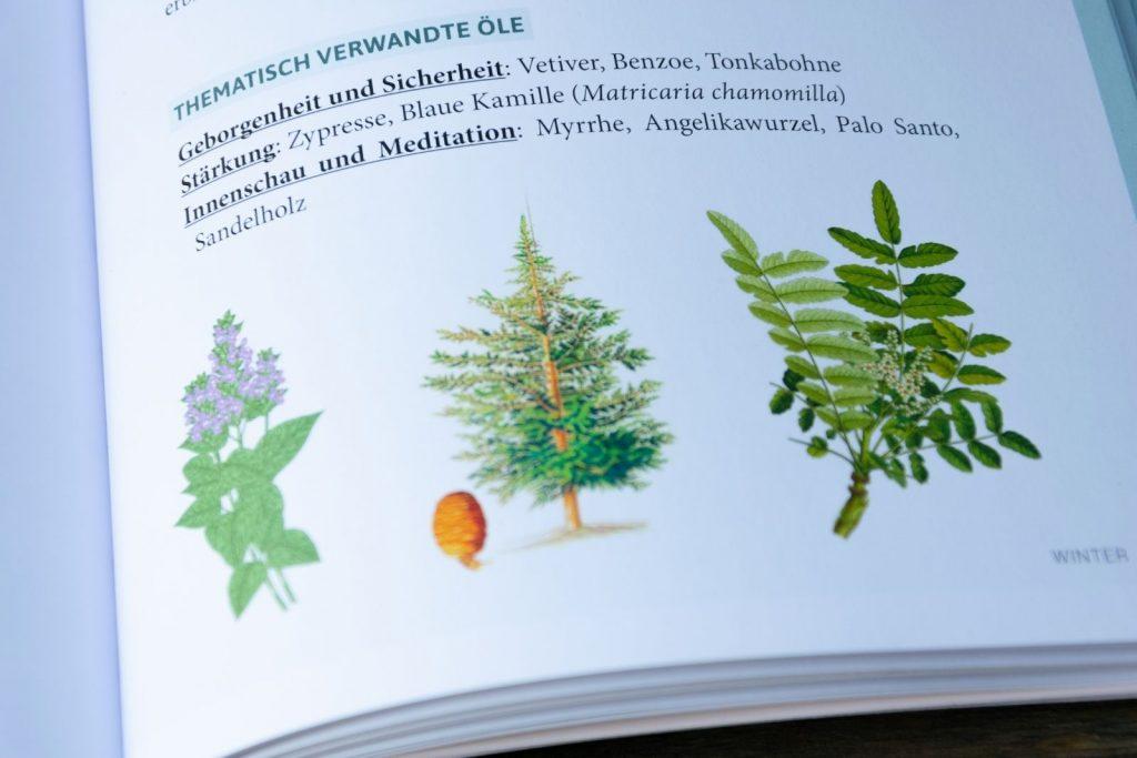 Buch über ätherische Öle begleitend durchs Jahr